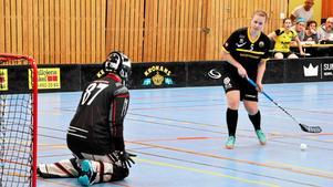 Insändarskribenten frågar sig vem ska egentligen betala kalaset när det gäller behovet av idrottshallar i Sundsvalls kommun.