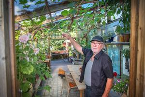 """Växthuset blev ett lusthus och Lenny Clarhäll beskär vinrankorna hårt för att få många druvor. """"I Italien säger man att man ska låta ens fiende beskära vindruvorna, just för att man måste vara tuff"""", säger han."""