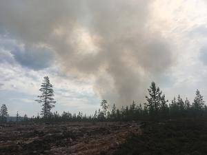 Under torsdagen kommer totalt 20 brandmän från Göteborg och Halland för att hjälpa till med släckningsarbetet utanför Torgås.