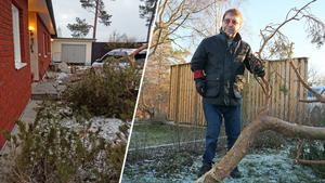 Ett grenverk på 80 kilo flög närmare 30 meter i stormen och landade på Anders Jonssons tak och sedan på bilen. Foto: Carina Albin/Privat