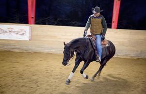 Henrik rider på Rue, en amerikansk quarterhäst.