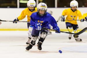 Västerås  barn och ungdomar behöver större möjligheter att spela ishockey. Foto: Anders Bjur/Bildbyrån