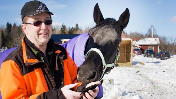Det var i hästhagen i Vretarne som Kjell-Erik Karlsson skådade tofsvipan, som vanligtvis kräver mindre snömängder för att stanna till. Och troligtvis flög den också vidare söderut efter att ha gått bet i Fagersta.