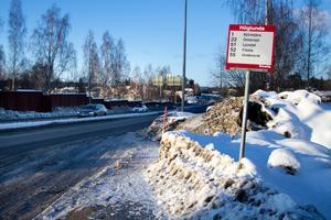 Levis och Leo brukar hoppa av vid Höglunda där de tryggt och säkert kan ta sig hem via tunneln under vägen.