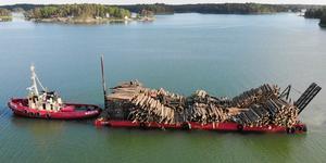Det extra arbetsamt att få bort stormfälld skog från öarna. Foto: Henrik Ismarker/Spillersboda flygfoto