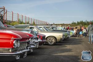 Parkeringen var snabbt fylld till bredden med bilar och nyfikna besökare. Foto: Erika Näsberg, Aliva Photography