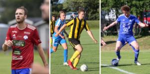 Ardala, Tomten och IFK Falköping är bara tre av totalt elva lokala lag som kommer synas i Hall Medias webbsändningar de kommande två veckorna.