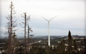 Björkhöjdens vindkraftområde utanför Ramsele.