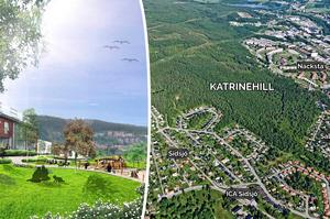 Behovet av Katrinehill är stort – men det måste gå rätt till i processen, menar Lars Holmgren (L). Skiss/Bild: Stadsbyggnadskontoret