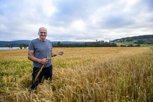 Efter fjolårets katastrofsommar har bönderna fått revansch. Under 50 år på bondgård har Hans Nordin aldrig upplevt en sådan rekordskörd som året sommar bjudit på.
