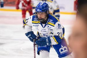 Leksands Nicole Hall tycker att HV71 är ett skickligt lag med många bra spelare, men kritiserar HV71:s disciplin. Foto: Daniel Eriksson/Bildbyrån.