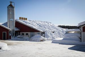 Från gårdssidan syns inte så mycket av takraset, men snömassor har kanat ner på marken.