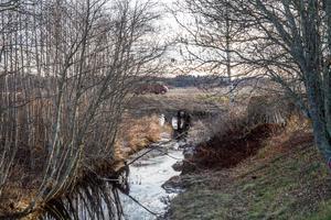 En ny rörbro ska byggas vid Sannavägen som ska förbättra för djurlivet i ån.