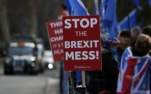 Brexitmotståndare demonstrerar.                                                          Foto: AP/TT