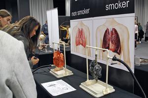 Lungor från en icke-rökare och en rökare. Båda går att pumpa så att man ser deras rörelsemönster.