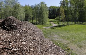 Insändarskribenten ger underbetyg till skötseln av Hurtigtorpets motionsområde i Hällefors. FOTO: Birgitta Skoglund
