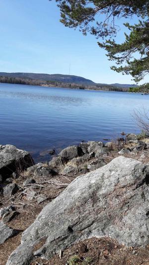 Utsikt från skolskogen.