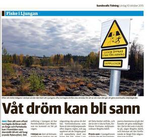 I oktober 2015 berättade ST om Fortums öppning för att återställa Ljungans älvfåra mellan Ånge och Parteboda, men Lars Mattsson efterlyser fortfarande ett engagemang från kommunen.