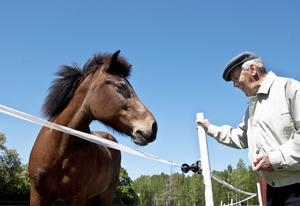 Torsten Eriksson är uppvuxen med hästar. Här pratar han med Tåby gårds ena islandshäst och delar ut morötter.