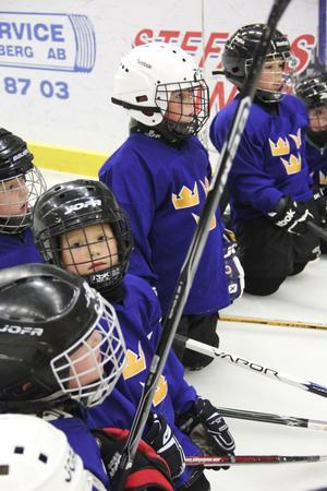Tre kronors hockeyskola för barn mellan sex och tio år var populär.