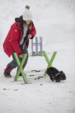 Jenny Svensk från Hälsinge kaninhoppare höll i kaninhoppningen.