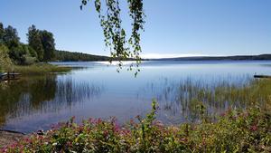 Sjön Haggen vid Ludvika en septemberdag i år.