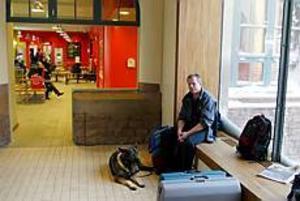 FOTO: LASSE HALVARSSON Inga tåg rullade mellan Uppsala och Gävle under morgontimmarna i går. Snöoväder och elfel i ett ställverk orsakade kaos. Schäfertiken Gisa tvingades vänta liksom ett stort      antal tvåbenta resenärer, bland dem husse Hans Alander.