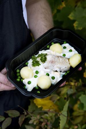 Torsk med äggsås och potatis. Notera att Fredrik lagt upp rätten så att ingredienserna har kontakt. På så vis behåller de fukten vid uppvärmning.