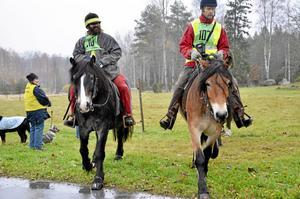 Lugn start. Starten i distansrittävlingar brukar gå lugnt till. Vissa rider omkring en stund i startområdet och väntar medan de övriga deltagarna ger sig iväg. Peter Eklund och Miko Leskinen var några av de sista att ge sig ut på banan.
