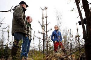 Markägarna Sigge Svensson och Henry Jönsson diskuterar förödelsen på kalhygget med Skogsstyrelsens Anna Westerlund.