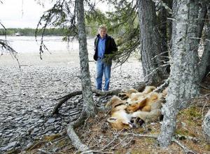 Ett par hundra meter från rävkropparna som Gunnar Berglund hittade, ligger Myrsandsvikens badplats.