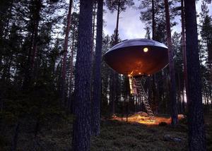 Sundsvallsarkitekten Bertil Harström har ritat hotellrummet i Harads utanför Luleå. Han ställde sig frågan vad det mest osannolika man skulle kunna tänka sig möta i skogen. Svaret blev ett ufo. Bild: Peter Lundström