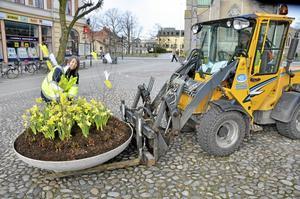 Den 1 april. Inget skämt alls. Örebro kommuns Jenny Andersson och Gunilla Persson, ser till så att våren kommer till Stortorget.