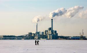 Häromveckan började de första skridskoåkarna synas på isen. De beredde snart väg för flera...