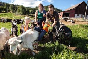 Familjen Anita och Manuel Wetter med sina tre söner är från Schweiz men driver sedan i mars i år en getgård i Skärvången. De 250 getterna producerar mjölk till Skärvångens Bymejeri.