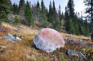 Renen på stenen, som naturen målat i rött redan innan. Ett av de mäktigaste inslagen längs stigen.