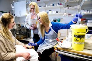 Sjuksköterskeutbildningen är populärast.