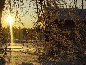 Bilden visar solen som så sakta, men säkert, visar sig fram och bär med sig hopp och värme.