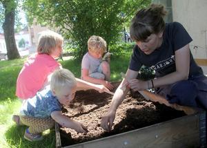 Elin Lund från föreningen Närjord bygger upp en odlingsverkstad dit barn får komma och delta.