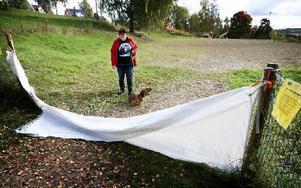 Carina Hagström vågar inte släppa lös den långhåriga taxen Yaya i hundhägnet sedan hon upptäckt partier där mark och staket inte möts. Foto: Peter Ohlsson