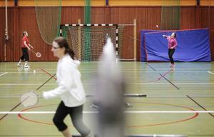 Det är full aktivitet vid alla näten i Storsjöskolans sporthallhall under söndagen.– Det vore roligt om några deltagare kan vara med på klubbmästerskapet i januari, säger Gunnar Haggelin.