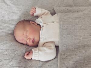 H.K.H. Prins Gabriel Carl Walther, hertig av Dalarna, föddes på torsdagen den 31 augusti 2017 klockan 11.24 på Danderyds sjukhus.