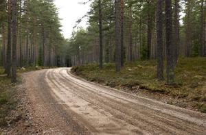 Göte Thorén  Offerdal ser en ljusning för de dåliga vägarna.