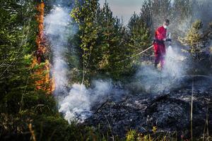 Räddningstjänsten kunde snabbt omringa elden och begränsa spridningen.