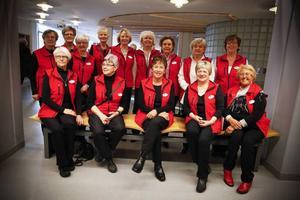 14 av de 20 volontärerna som ska hjälpa patienter på Östersunds sjukhus.
