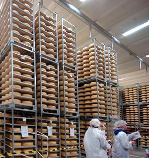 Stora mängder ost finns ännu kvar i Milkos ostlager i Bollnäs. När det lagrades som mest handlade det om cirka 2400 ton, i dag är lagret hälften så stort.