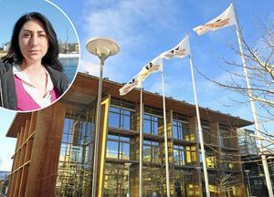 Mälardalens högskola Västerås   Connie Askenbäck (Dickinson)