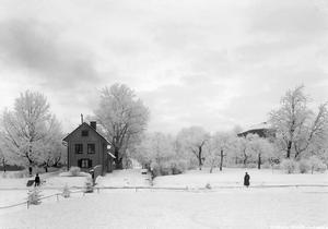 Vinter på Alnängsgatan 1903.