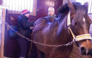 Kompisarna Jeanette Pettersson, 12 år och Anna Östberg, 14 år, pysslar om stoet Mon Amie efter lördagens hoppträning. Anna Östberg är den som rider Mon Amie mest och hästen ligger henne varmt om hjärtat.