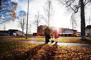 92-åriga Viola Appelqvist är ute på sin dagliga morgonpromenad.